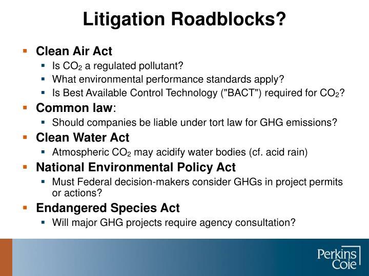 Litigation Roadblocks?