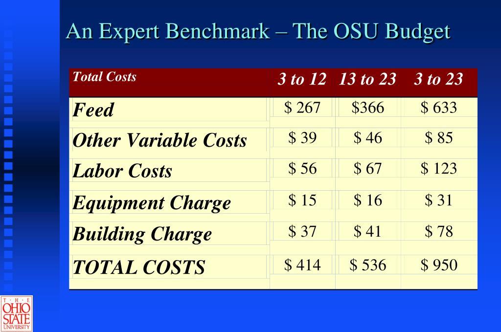 An Expert Benchmark – The OSU Budget