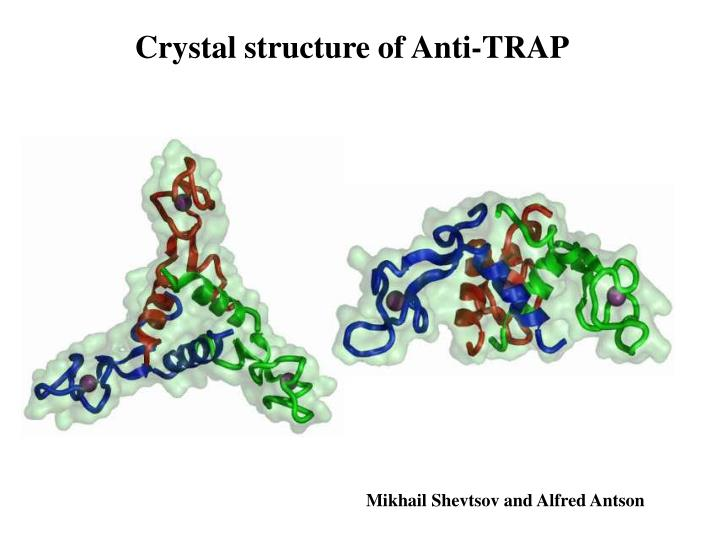 Crystal structure of Anti-TRAP