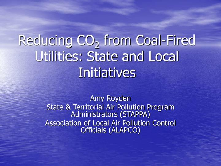 Reducing co 2 from coal fired utilities state and local initiatives