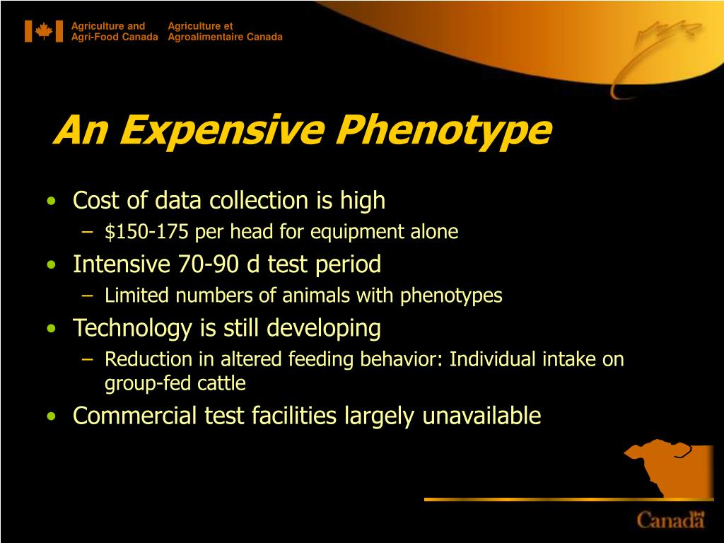 An Expensive Phenotype