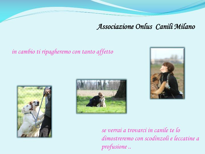 Associazione Onlus