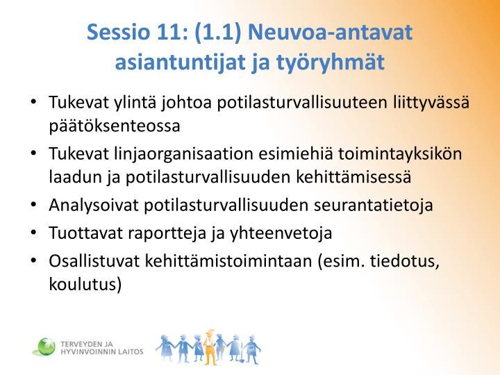 Sessio 11: (1.1) Neuvoa-antavat asiantuntijat ja työryhmät