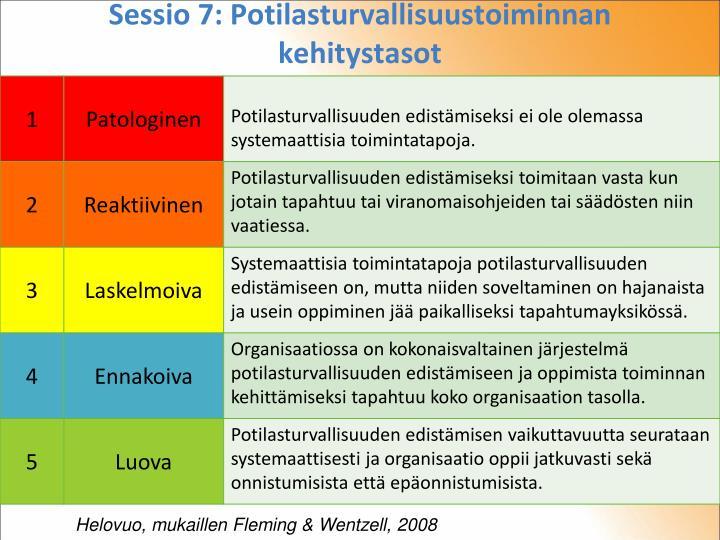 Sessio 7: Potilasturvallisuustoiminnan kehitystasot