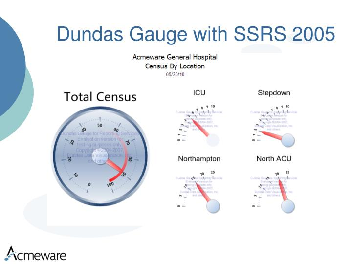 Dundas Gauge with SSRS 2005