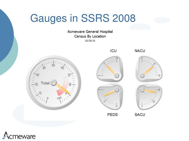Gauges in SSRS 2008
