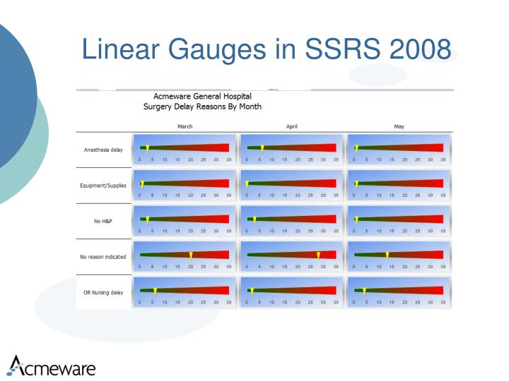 Linear Gauges in SSRS 2008