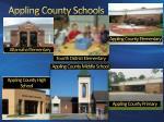 appling county schools1