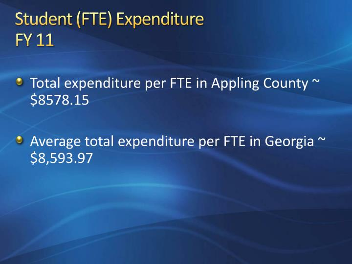 Student (FTE) Expenditure