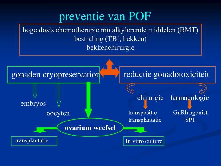 preventie van POF