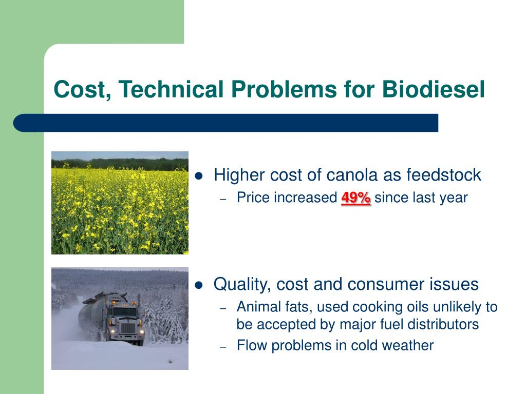 Cost, Technical Problems for Biodiesel