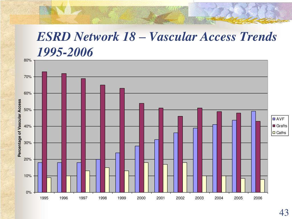ESRD Network 18 – Vascular Access Trends          1995-2006