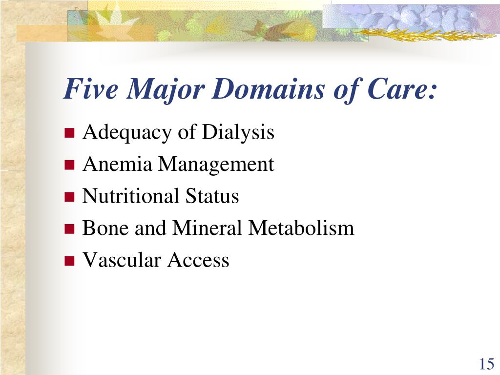 Five Major Domains of Care: