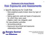 disclosures in the annual reports risk exposures and assessments48