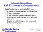 disclosures in the annual reports risk exposures and assessments49