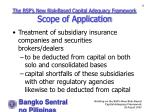 the bsp s new risk based capital adequacy framework scope of application16