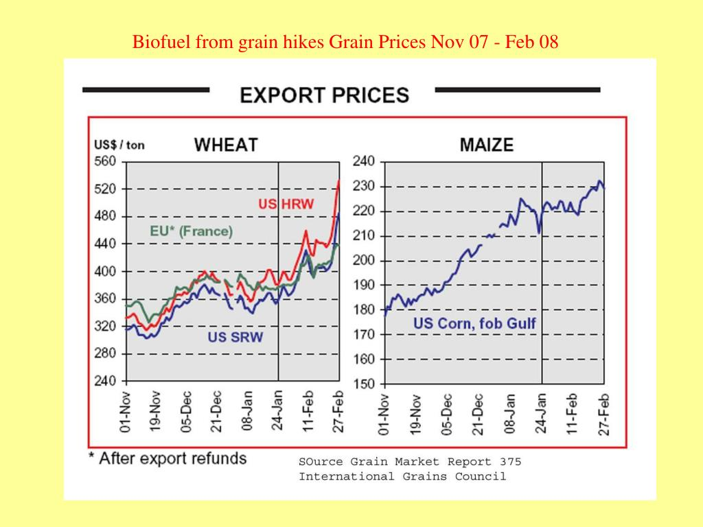 Biofuel from grain hikes Grain Prices Nov 07 - Feb 08
