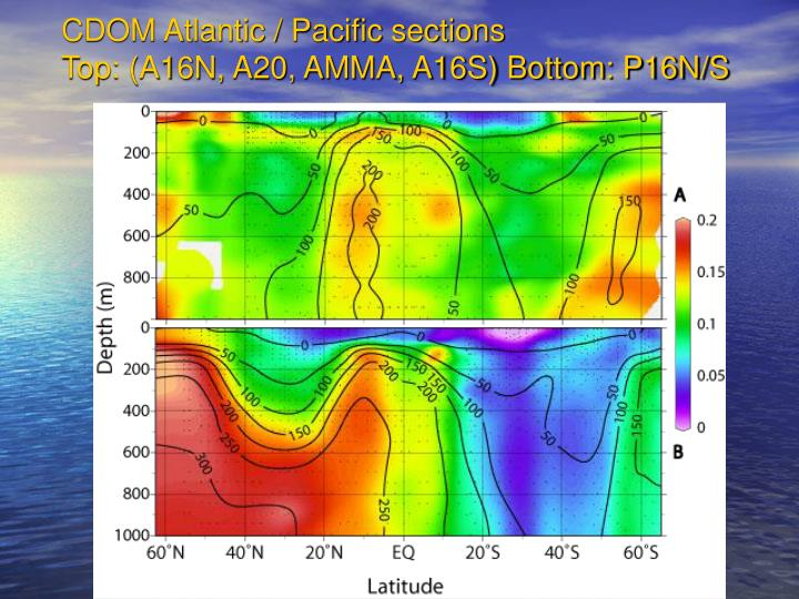 CDOM Atlantic / Pacific sections