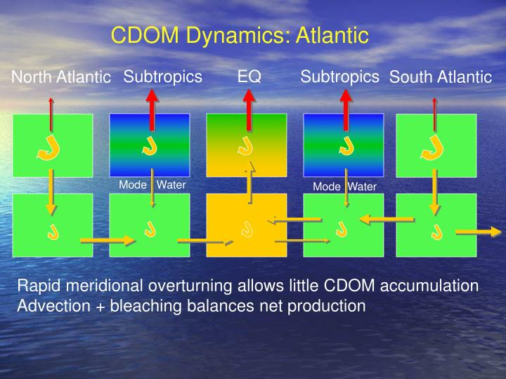 CDOM Dynamics: Atlantic