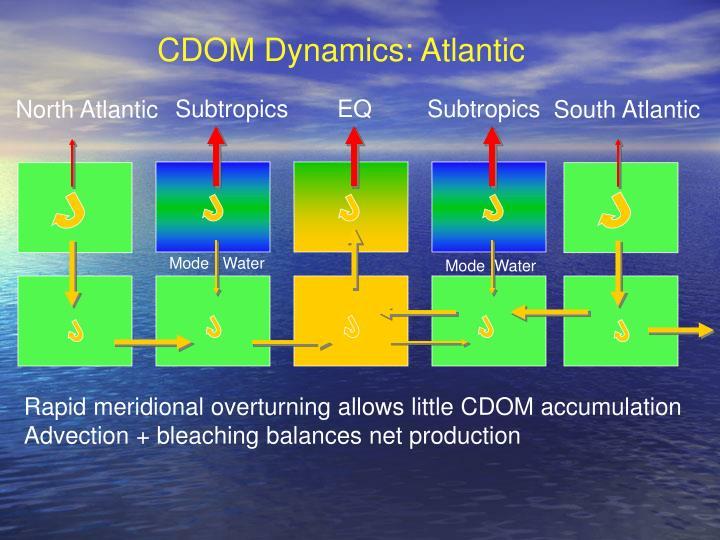 CDOM Dynamics: Atlantic