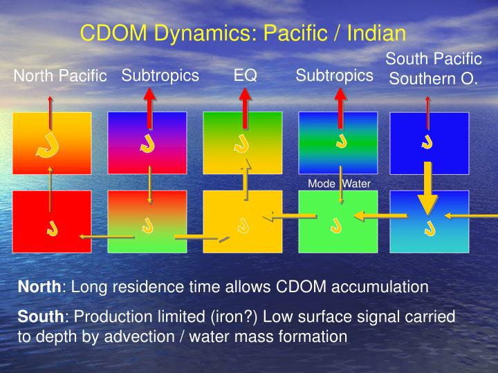 CDOM Dynamics: Pacific / Indian