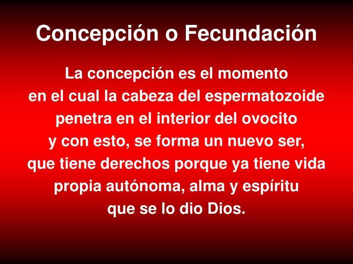Concepción o Fecundación