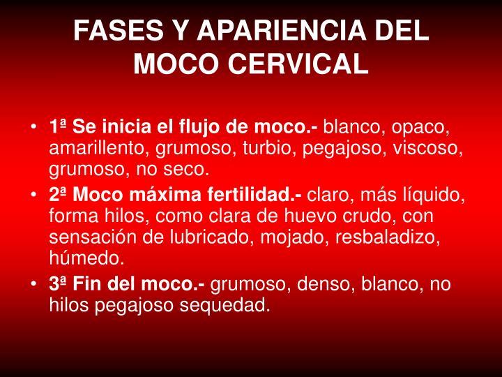 FASES Y APARIENCIA DEL MOCO CERVICAL