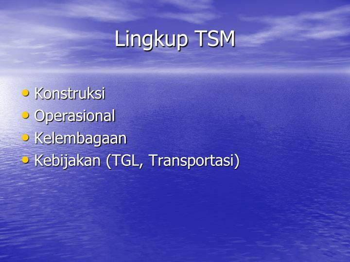Lingkup TSM
