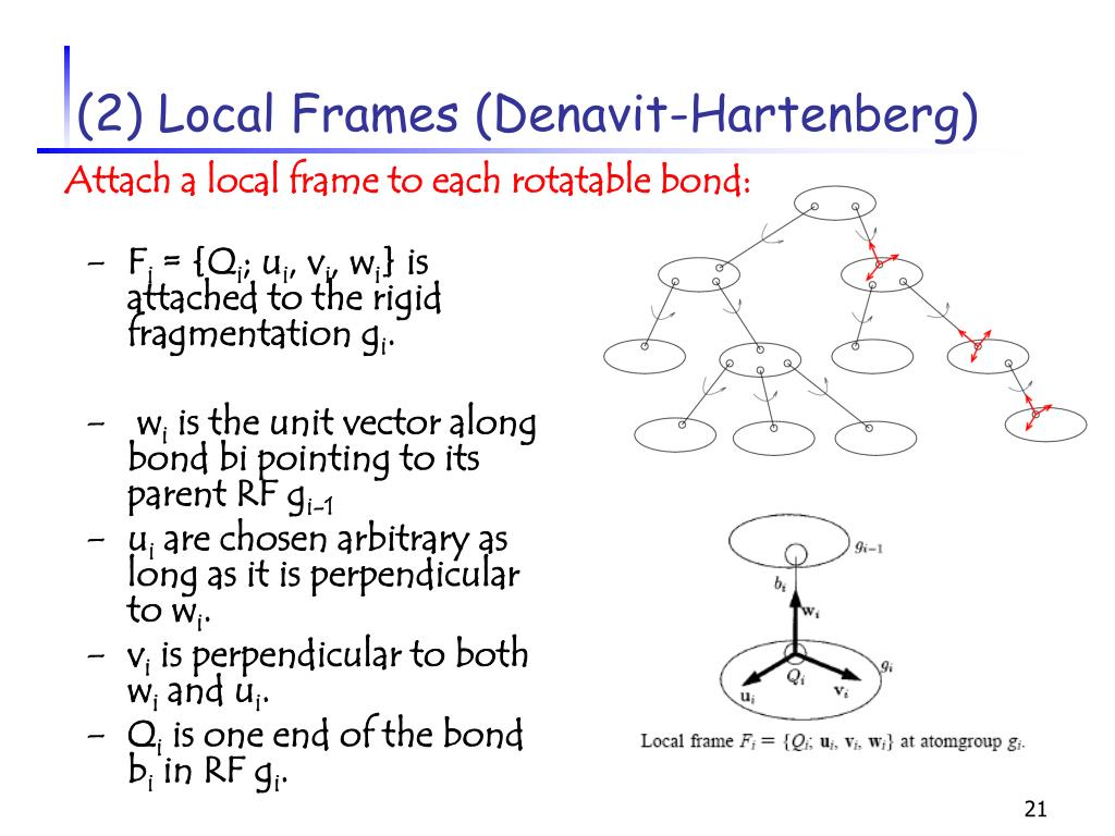 (2) Local Frames (Denavit-Hartenberg)
