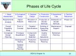 phases of life cycle