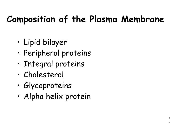 Composition of the Plasma Membrane