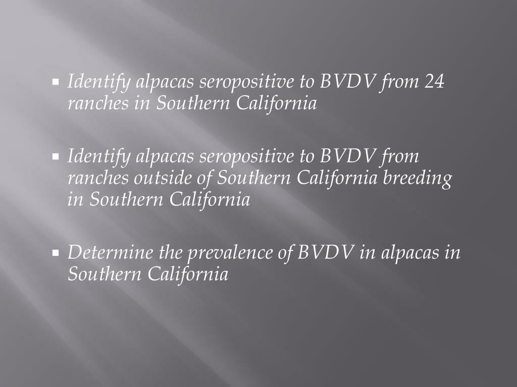 Identify alpacas seropositive to BVDV from 24 ranches in Southern California