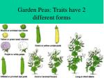 garden peas traits have 2 different forms