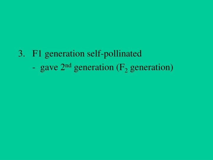 F1 generation self-pollinated