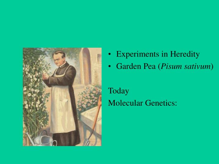 Experiments in Heredity