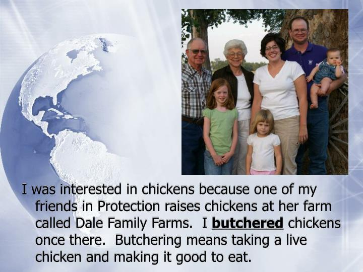 I was interested in chickens because one of my friends in Protection raises chickens at her farm cal...