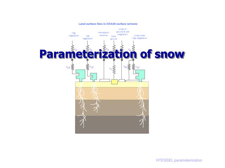 Parameterization of snow