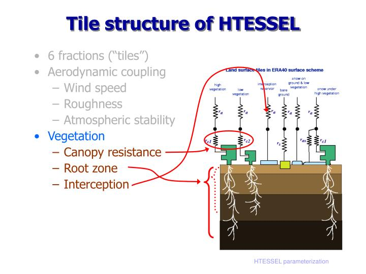 Tile structure of HTESSEL