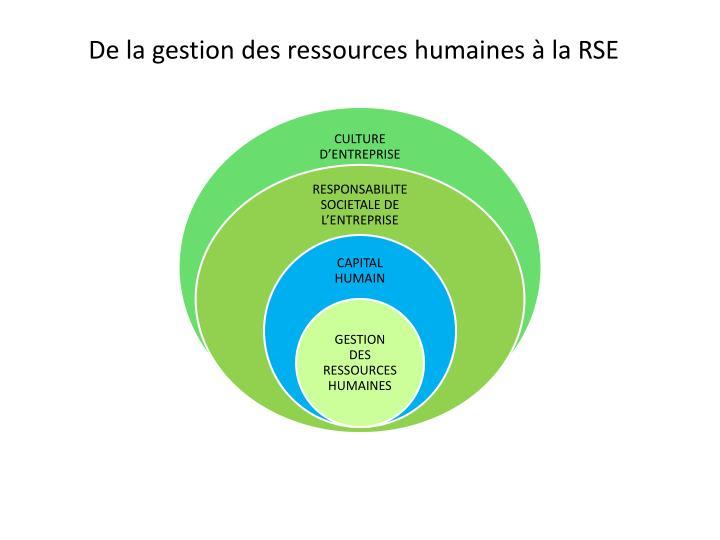 De la gestion des ressources humaines à la RSE