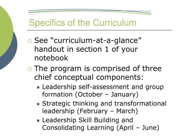 Specifics of the Curriculum