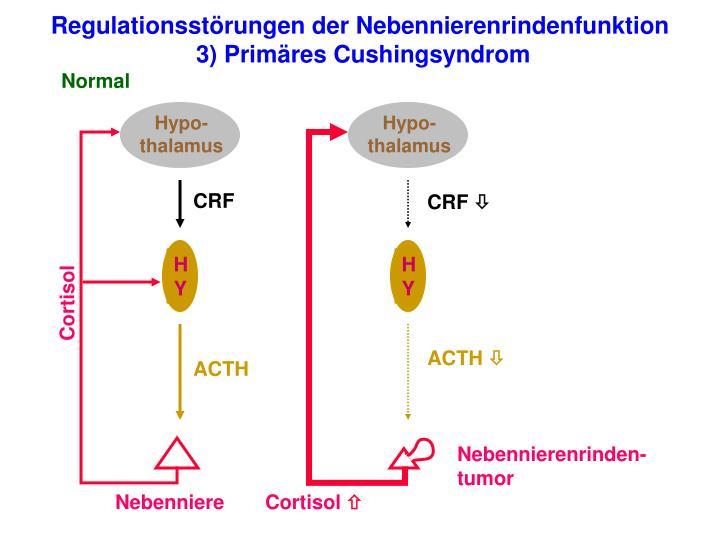 Hypo-thalamus