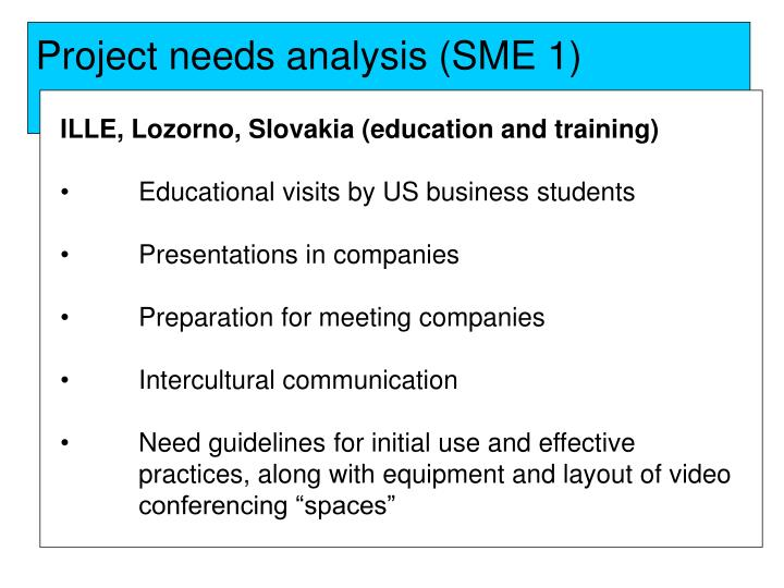 Project needs analysis (SME 1)