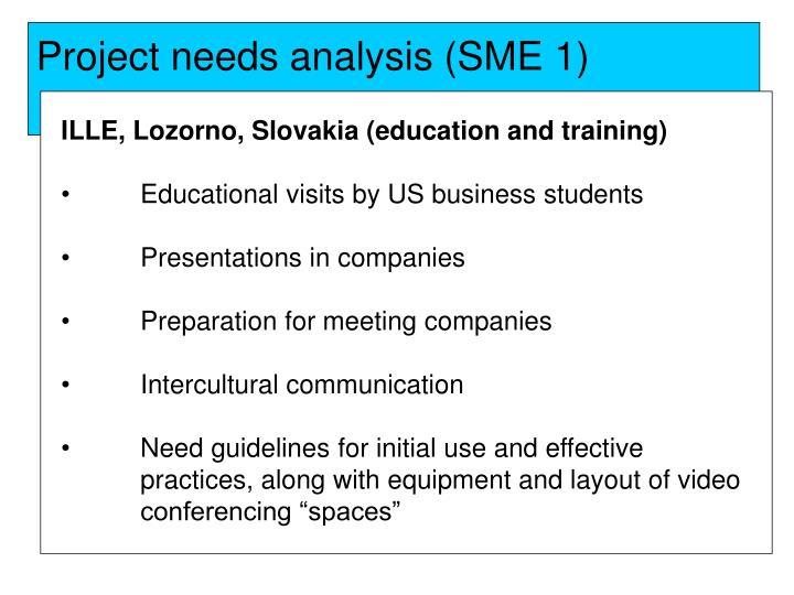 Project needs analysis (SME 1)