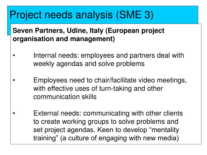 Project needs analysis (SME 3)