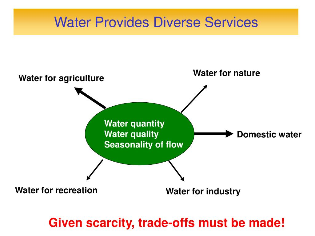 Water Provides Diverse Services