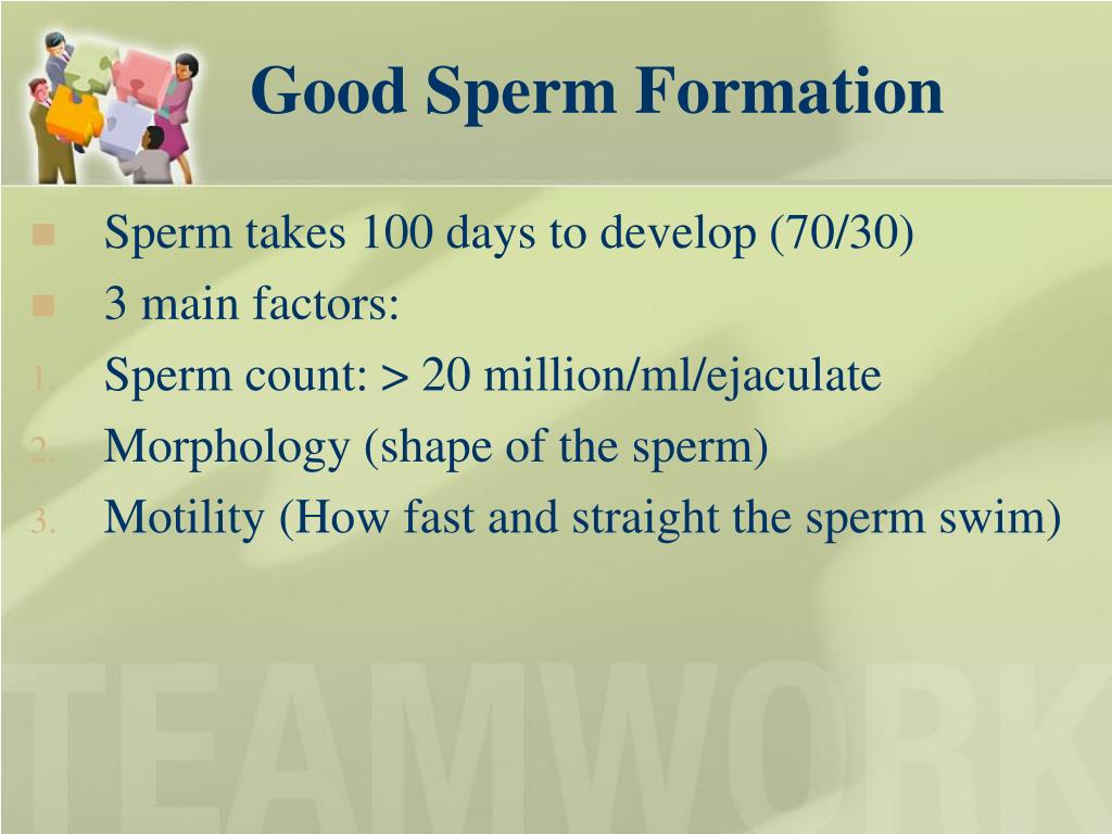 Good Sperm Formation