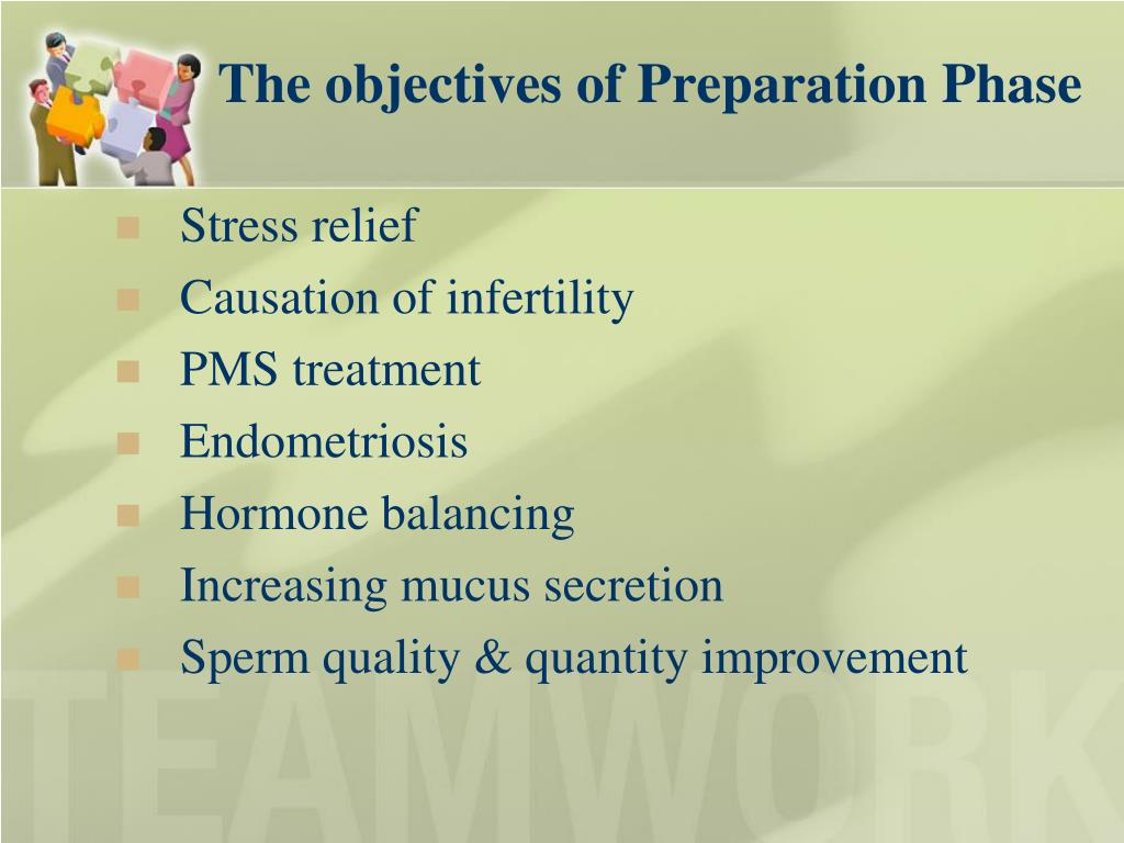 The objectives of Preparation Phase