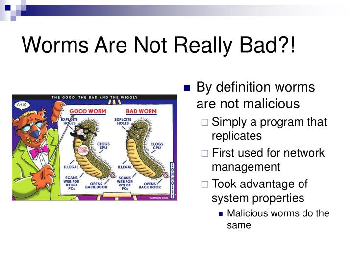 Worms Are Not Really Bad?!