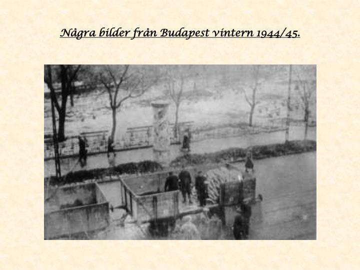 Några bilder från Budapest vintern 1944/45.