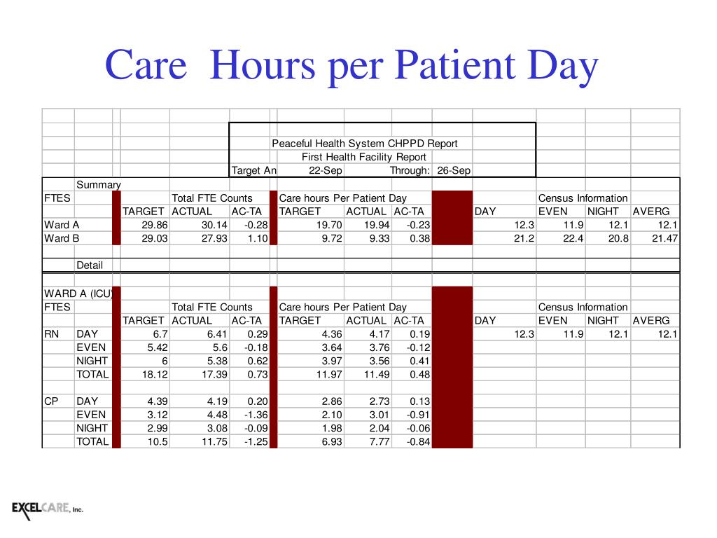 Care  Hours per Patient Day